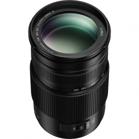 Panasonic Lumix G Vario 100-300mm f/4-5.6 II OIS