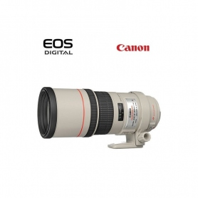 Canon EF 300mm f-4 L IS USM - Assistenza Italia