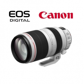 Canon EF 100-400mm f-4.5-5.6 L IS II USM - Assistenza Italia